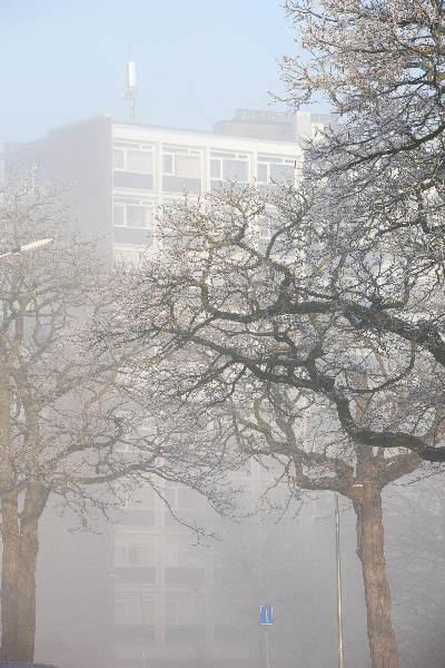 "\""Nijmegen, 31-12-2010 . Sneeuw, mist\"""