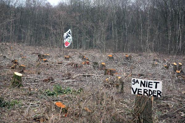 "\""Gekapte bomen in Schinveldse bossen bij vliegveld Geilenkirchen\"""