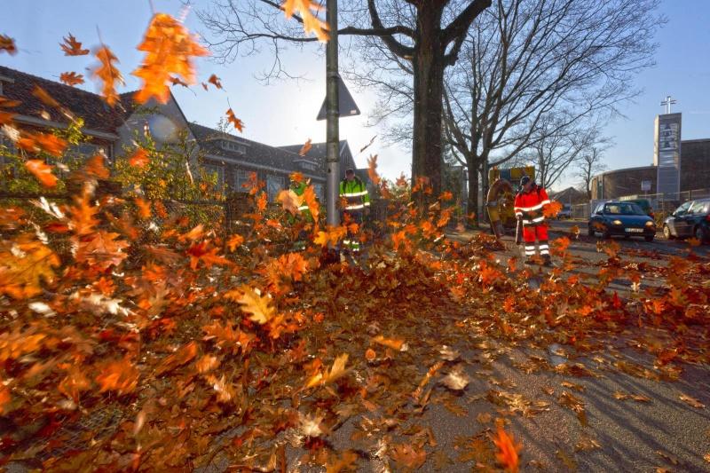 schoonblazen 7 heuvelenloopparcours (met veel blad, mensen van Dar. Nijmegen, 13-11-2014 . dgfoto. Zevenheuvelen