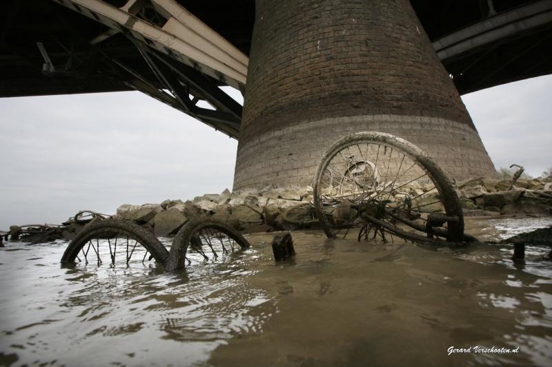 Extreem laag water, tweede pijler Waalbrug helemaal droog.Er liggen daar wel 10 fietsen.. Nijmegen, 11-11-2015 .