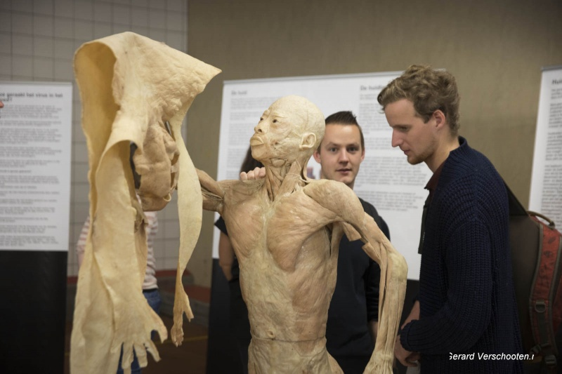 Real Human bodies, expo in Bouillon (zaal) Honigfabriek. Nijmegen, 19-10-2017 .