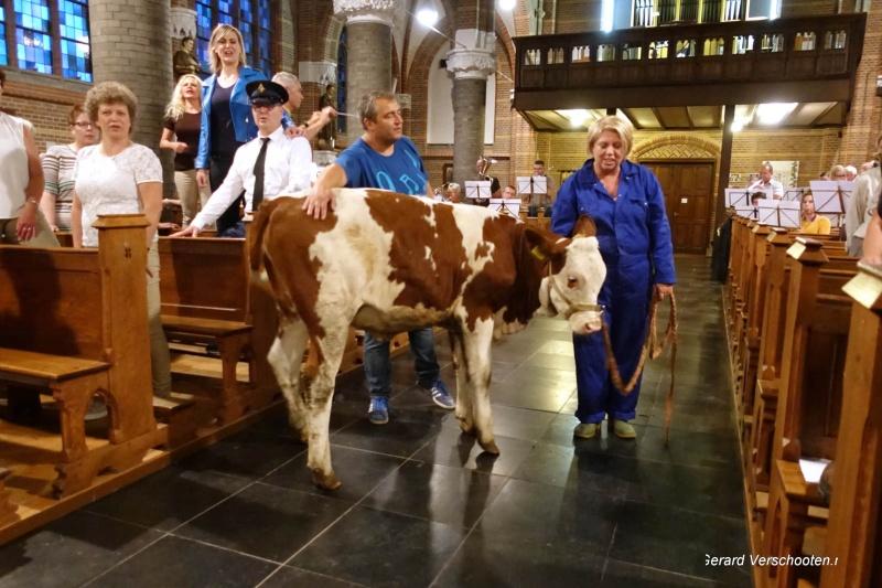 Verhalen van de ooij, locatietheater van de Plaats met koe in kerk en Wies en Maij en . Nijmegen, 29-6-2017 .
