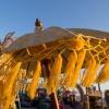 Bloemendaal Woodstock, 8-7-2013 . dgfoto.