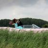 Huwelijk, Bruiloft Mieke Soons en Peter Theunissen, Ooij, Kaaij, Lux, Cadillac. Nijmegen, 22-6-2013 . dgfoto.