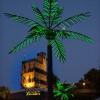 Palmbomen bij Belvedere. Tropische taferelen. Zomerfeesten, Vierdaagsefeesten, Vierdaagse, . Nijmegen, 19-7-2013 . dgfoto.
