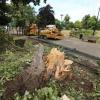 Bij storm omgewaaide boom in Kronenburgpark. Nijmegen, 29-7-2013 . dgfoto.