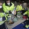 Kanaalstraat, DAR-terrein Studenten onderzoeken afvalzakken . Nijmegen, 12-2-2015 . dgfoto.