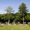 Middag rolstoel vierdaagse voor ouderen. Malvert. Nijmegen, 11-6-2015 . dgfoto.
