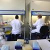 Novio Tceh Campus,  laboratoria/mensen aan het werk in laboratorium/witte jassen. . Nijmegen, 12-10-2015 . dgfoto.