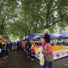 Markt op Wedren sfeervolle 'franse' markt onder de bomen. . Nijmegen, 30-9-2017 .