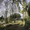 Begraafplaats Daalseweg. Nijmegen, 19-3-2018 . geen kerkhof