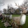 Kerstman in slee met rendieren, levensgroot , Ewijk
