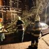 """""""Boom op (mijn) auto in de Regentessestraat vanwege storm wordt door de brandweer verwijderd."""""""