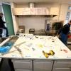 """""""Nieuwe keuken in de Plak, beetje schilderen ook"""""""