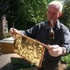 """""""Imkerij de Immenhof Malden met imker en bijen"""""""