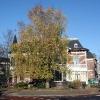 """Mariaplein Nijmegen"""